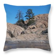 Willow Lake Number One Color Throw Pillow by Heather Kirk