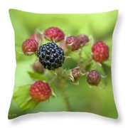 Wild Berries Throw Pillow by Christina Rollo