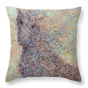 Wild Horse Throw Pillow by James W Johnson