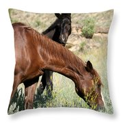 Wild Horse Mama And Her Baby Throw Pillow by Sabrina L Ryan