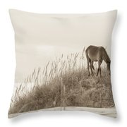 Wild Horse On The Outer Banks Throw Pillow by Diane Diederich