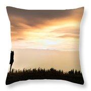 Wild Horse Sunset Throw Pillow by Leland D Howard