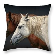 Wild Horses Throw Pillow by Daniel Hagerman