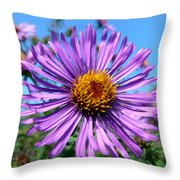 Wild Purple Aster Throw Pillow by Christina Rollo
