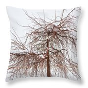 Wild Springtime Winter Tree Throw Pillow by James BO  Insogna