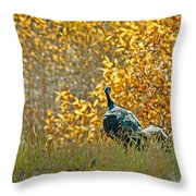 Wild Turkeys And Fall Colors Throw Pillow by Robert Bales