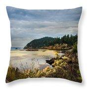 Wildcat Cove Throw Pillow by Robert Bales