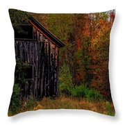 Wilderness Barn Throw Pillow by Brenda Giasson