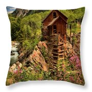 Wildflowers And Clouds Throw Pillow by Adam Jewell
