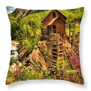 Wildflowers At Crystal Throw Pillow by Adam Jewell