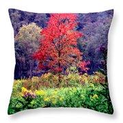 Wildwood Flowers Throw Pillow by Karen Wiles