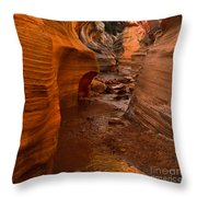 Willis Creek Slot Canyon Throw Pillow by Robert Bales