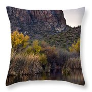 Willow Reflections Throw Pillow by Dave Dilli
