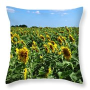 Windblown Sunflowers Throw Pillow by Robert Frederick