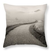 Winding Path And Mist Throw Pillow by Marilyn Hunt