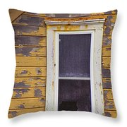Window in Abandoned House Throw Pillow by Jill Battaglia