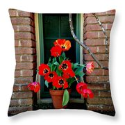 Windows Series - 4 Throw Pillow by Haleh Mahbod