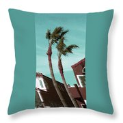 Windy Day By The Ocean  Throw Pillow by Ben and Raisa Gertsberg
