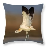 Wing Stretch Throw Pillow by Daniel Behm