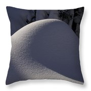 Winter Abstract Throw Pillow by Sean Griffin