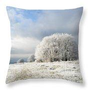 Winter Throw Pillow by Anne Gilbert