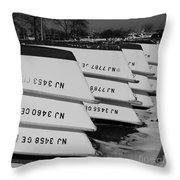 Winter At The Marina Throw Pillow by Paul Ward