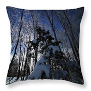 Winter Blue Throw Pillow by Karol Livote