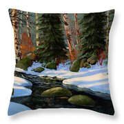 Winter Brook Throw Pillow by Frank Wilson