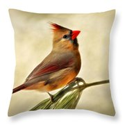 Winter Cardinal Throw Pillow by Christina Rollo