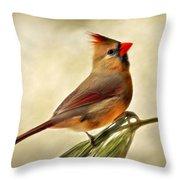 Winter Cardinal Throw Pillow by Christina Rollo