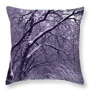 Winter In Purple Throw Pillow by Carol Groenen
