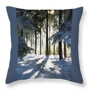 Winter Landscape Throw Pillow by Aged Pixel