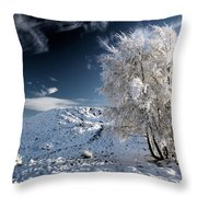 Winter Landscape Throw Pillow by Grant Glendinning
