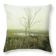 Winter Morning Londrigan 1 Throw Pillow by Linda Lees