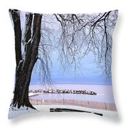 Winter Park In Toronto Throw Pillow by Elena Elisseeva