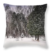 Winter Postcard Throw Pillow by Gwen Gibson