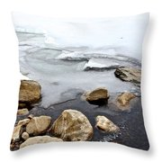 Winter Quabbin Throw Pillow by Randi Shenkman