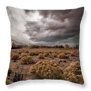 Winter Storm Throw Pillow by Cat Connor