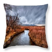 Winter Storm Over Owens River Throw Pillow by Cat Connor