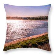 Winter Sunshine Throw Pillow by Dawn OConnor