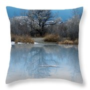 Winter Taking Hold Throw Pillow by Fran Riley