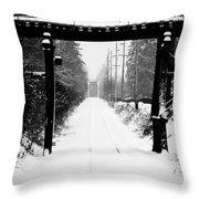 Winter Tracks Throw Pillow by Aaron Lee VonBerg