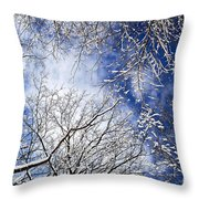 Winter trees and blue sky Throw Pillow by Elena Elisseeva