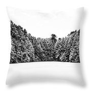 Winter Trees Mink Brook Hanover Nh Throw Pillow by Edward Fielding