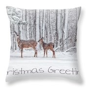 Winter Visits Card Throw Pillow by Karol Livote