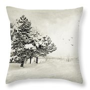 Winter White Throw Pillow by Julie Palencia