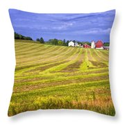 Wisconsin Dawn Throw Pillow by Joan Carroll