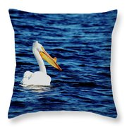 Wisconsin Pelican Throw Pillow by Thomas Young