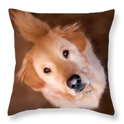Wishful Thinking Throw Pillow by Christina Rollo