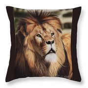 Wondering Throw Pillow by Jackie Mestrom